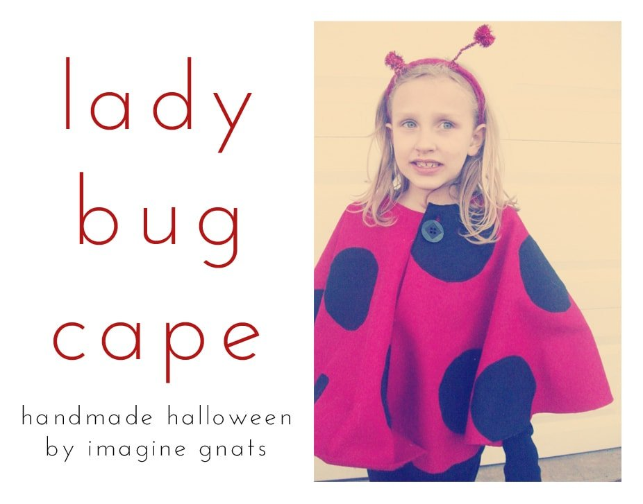 Lady Bug Cape Tutorial with Imagine Gnats