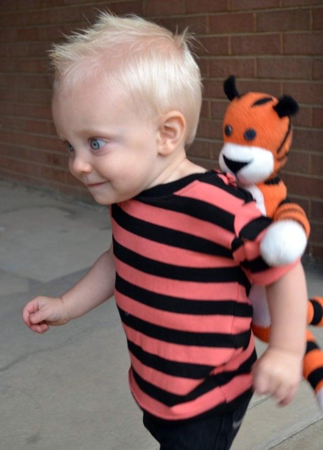 DIY Calvin and Hobbes Costume