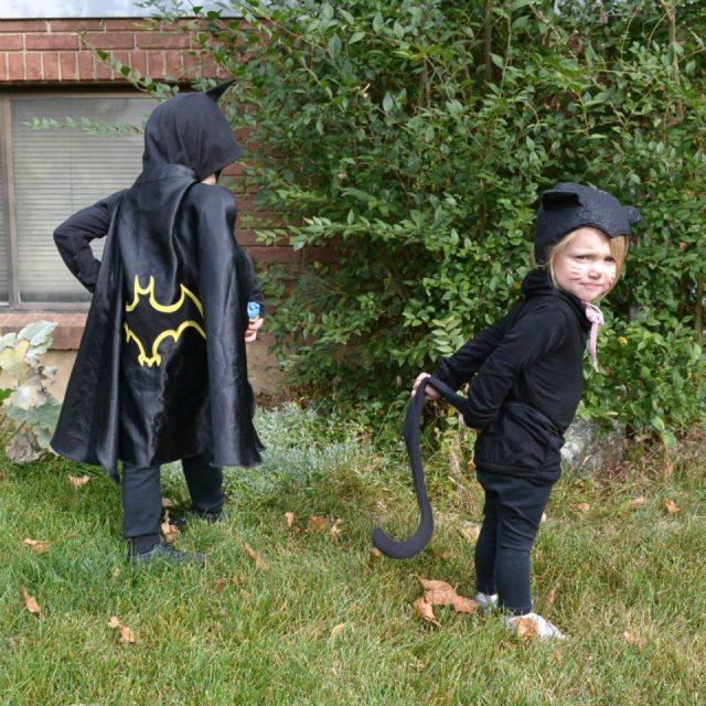 Batman And Catwoman Halloween Costumes.Diy Halloween Costumes Batman And Catwoman Heather Handmade