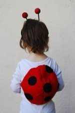 How to Make a Ladybug Costume
