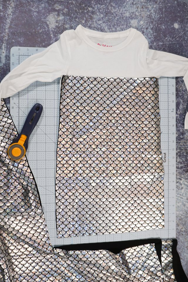 cut two rectangles of scale fabric