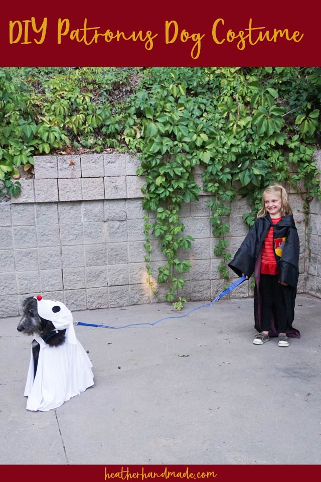 DIY Patronus Costume for your Dog